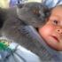 Ребенка бросили зимой в холодном подвале. Но эта кошка..