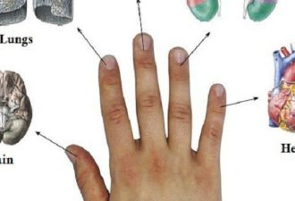 every-finger-is-connected-with-2-organs-japanese-methods-for-curing-in-5-minutes