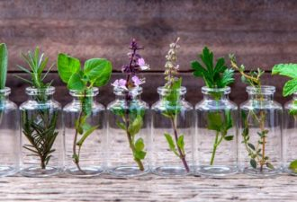 herbs_to_grow_in_water_featured-696x365
