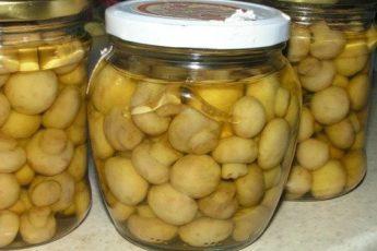 Как употреблять настойку от глистов сделанную из молодых грецких орехов