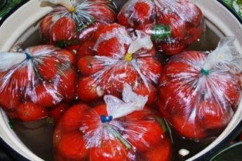 Pomidorchiki-prigotovlennye-v-paketah-500x278