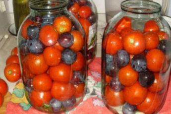 Pomidory-s-sinimi-slivami-500x278