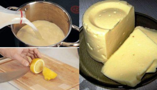 Домашний-сыр