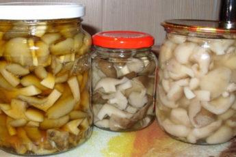 Самый-вкусный-рецепт-маринования-грибов
