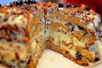 Tort-Truhlyavyj-pen-500x278