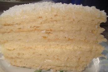 Tort-Rafaello-500x278