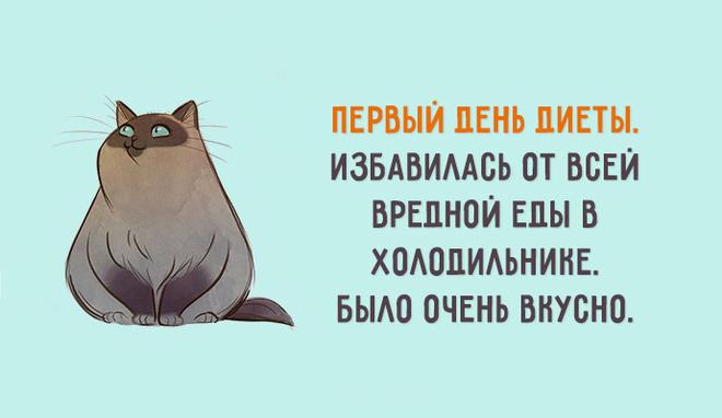 Картинки по запросу шутки про похудение в картинках
