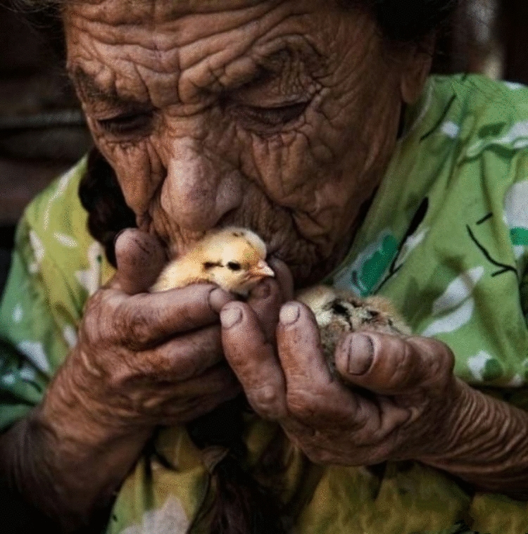 Очень нежные и глубокие фотографии со всего Мира