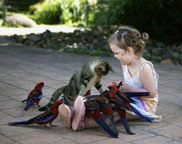 Дети и коты (18 фото)
