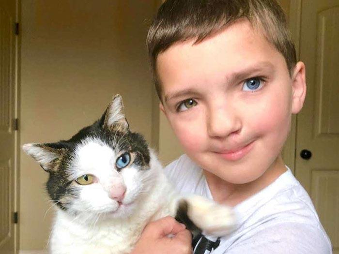 Мальчик с разным цветом глаз нашёл себе такого же котёнка