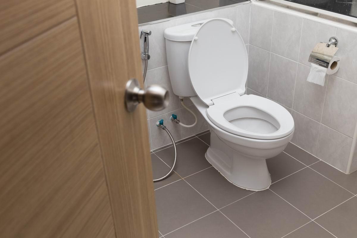 освежитель для туалета своими руками